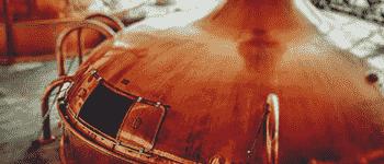 food and beverages sugar distillation